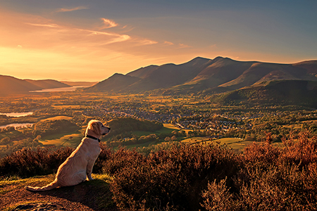 Taken at Walla Crag overlooking Keswick and Skiddaw.